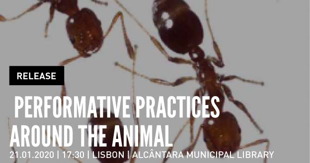 Release | Performative Practices Around the Animal